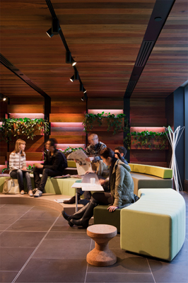 hassell-giblin_eunson_library-3